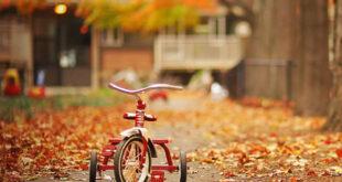 Como preparar a casa para a chegada do Outono