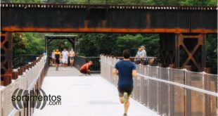 Atividade Física - Sortimentos Saúde e Esportes