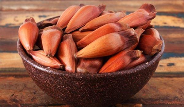 Delicias do Inverno - Benefícios do Pinhão - Sortimentos.com Gastronomia